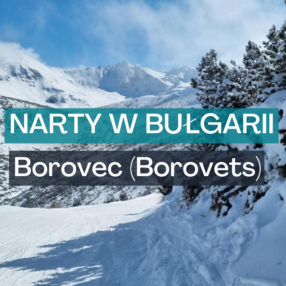borovets_wyrozniajacy